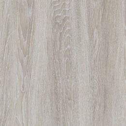 Dąb szary – Greko